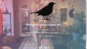 0d136b9b781 Blackbird Hill Copenhagen - Company Information - Vainu